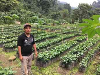 SF Bay Coffee  apoya  la economía de las familias cafetaleras de México